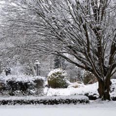 Razkrivamo, koliko snega bo zapadlo